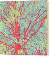Tree Branches 8 Wood Print