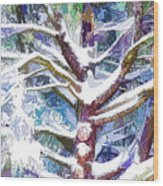 Tree Branches Covered By Snow In Winter Wood Print