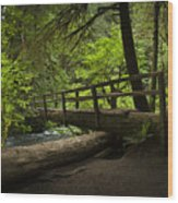 Tree Bridge Wood Print
