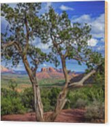 Tree Captures Sedona Wood Print