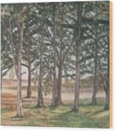Tree Collection Wood Print