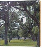 Tree Dance Wood Print