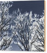 Tree Fantasy 2 Wood Print