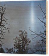 Tree Flash Wood Print
