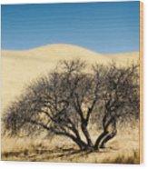 Tree Formation 3 Wood Print