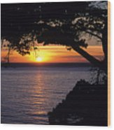 Tree Framing Seascape Sunset Wood Print by Ali ONeal - Printscapes