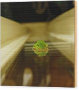 Tree Frog II Wood Print