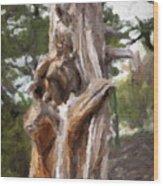 Tree Gnarl Wood Print
