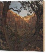Tree Heart Wood Print