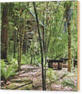 Tree House In The Woods Wood Print