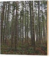 Tree Hugger's Paradise Wood Print