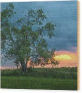 Tree Impression Wood Print