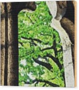 Tree In A Medieval Frame Wood Print