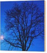Tree In Blue Sky Wood Print
