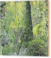 Tree In Garden Wood Print