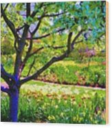 Tree In Spring Wood Print
