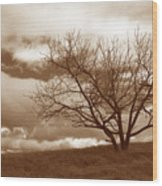 Tree In Storm Wood Print