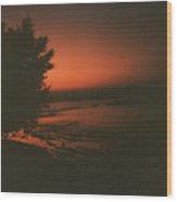 Tree In Sunset Wood Print