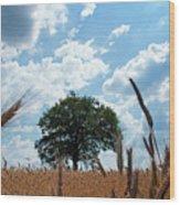 Tree In The Field Wood Print