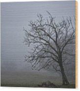 Tree In The Fog Wood Print