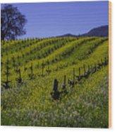Tree  In Vineyards Wood Print