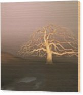 Tree In Winter I Wood Print