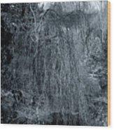 Tree In Winter Wood Print