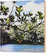 Tree Limb Over Water 2 Wood Print