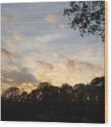 Tree Line And Clouds Wood Print