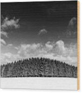 Tree Line In Winter Wood Print