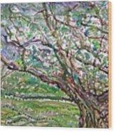 Tree, Loom Of Light And Life Wood Print