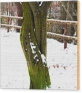 Tree Lovers Wood Print