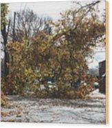 Tree Meets Hurricane Sandy By The Fair Lawn Nj Post Office Wood Print