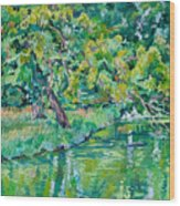 Tree Near A Pond In Lednice Castle Park Wood Print