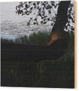 Tree Near The Water3 Wood Print