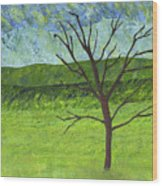 Tree No Leaves Wood Print