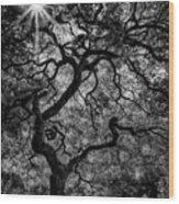 Tree Noir Wood Print