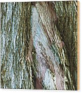 Tree Nymph in Vancouver Wood Print