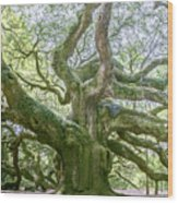 Tree Of History Wood Print