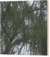 Tree Of Tears Wood Print