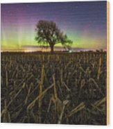 Tree Of Wonder Wood Print
