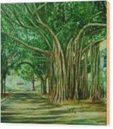 Tree Old Guy Wood Print