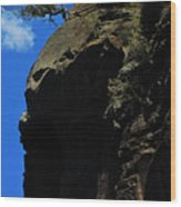 Tree On A Cliff At Battleship Rock New Mexico - 003 Wood Print