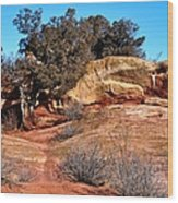 Tree On Titan Road Wood Print