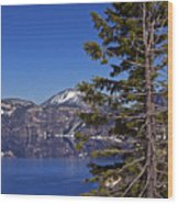 Tree Over Crater Lake Wood Print
