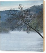 Tree Over Gasconade River Wood Print