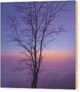 Tree Portrait Wood Print