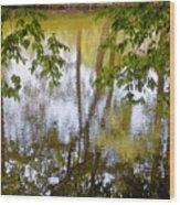 Tree Reflections Wood Print