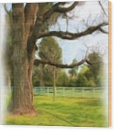 Tree Series 1323 Wood Print