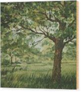 Tree Shadows Wood Print